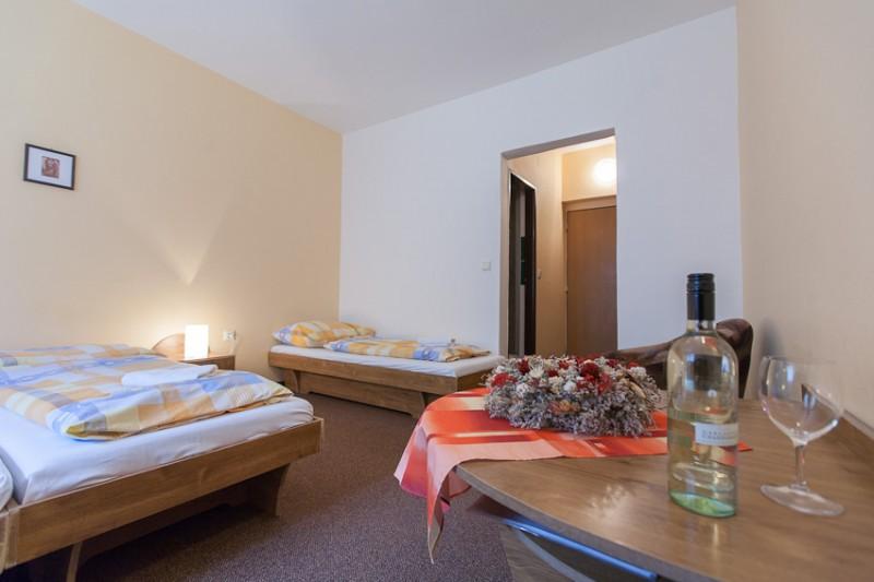 Horský hotel TEPLICA #9