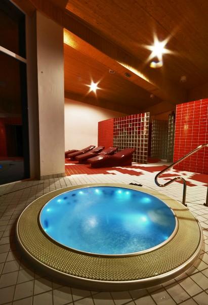 Horský Wellness hotel JAVORNÍK #20