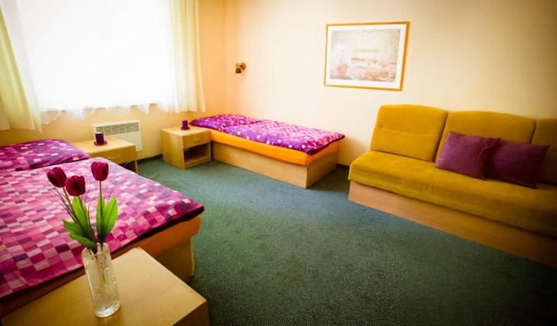 Horský hotel MAGURA - Chvojnica #5