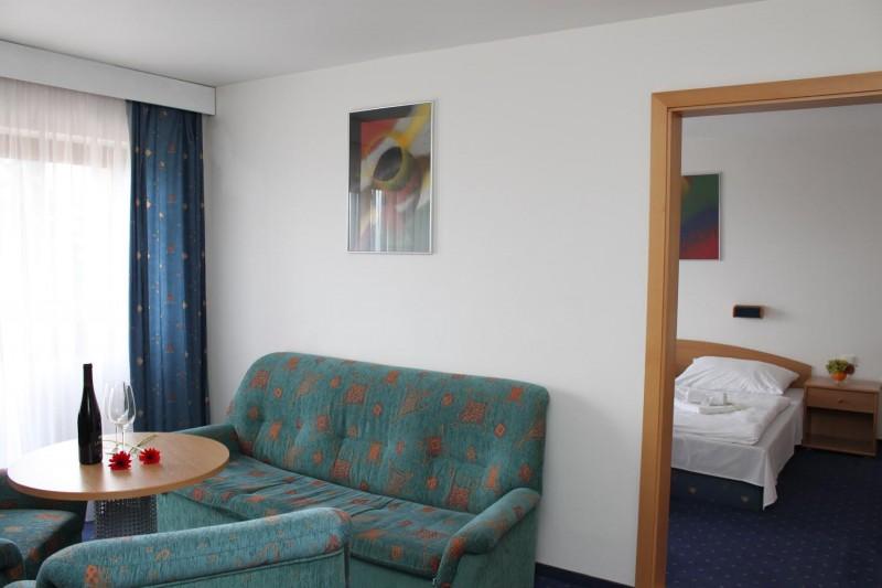 Horský hotel MARTINSKÉ HOLE #11