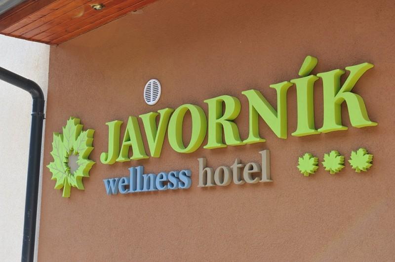 Horský Wellness hotel JAVORNÍK #6