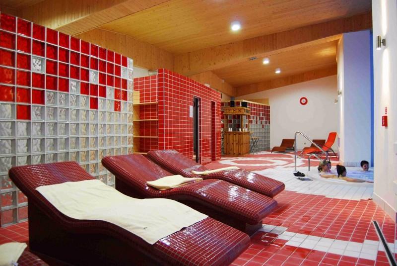 Horský Wellness hotel JAVORNÍK #36
