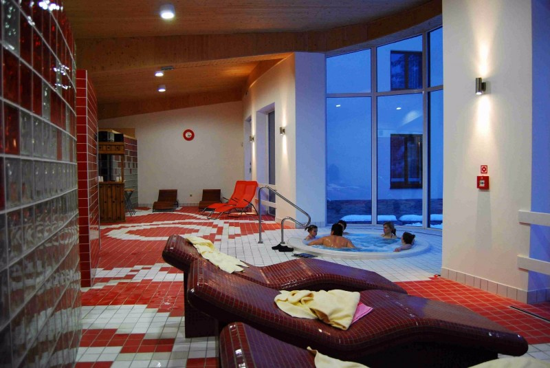 Horský Wellness hotel JAVORNÍK #37