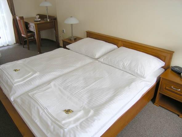 Hotel GRAND #4