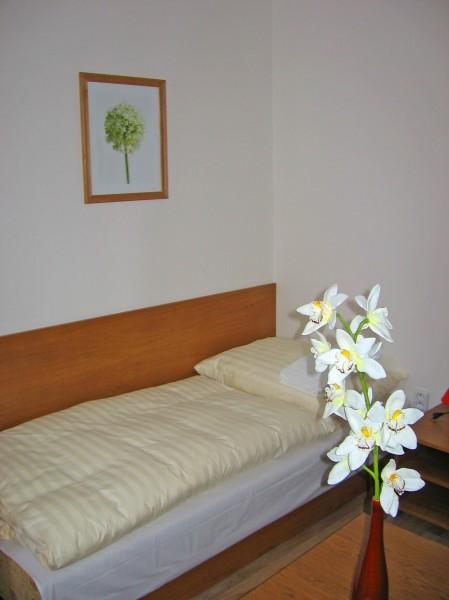 Hotel AKADEMIK #9