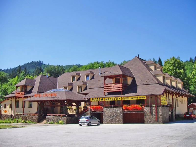 Hotel ALTENBERG #1