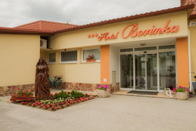 Termální koupaliště Podhájská - Hotel BORINKA  #2