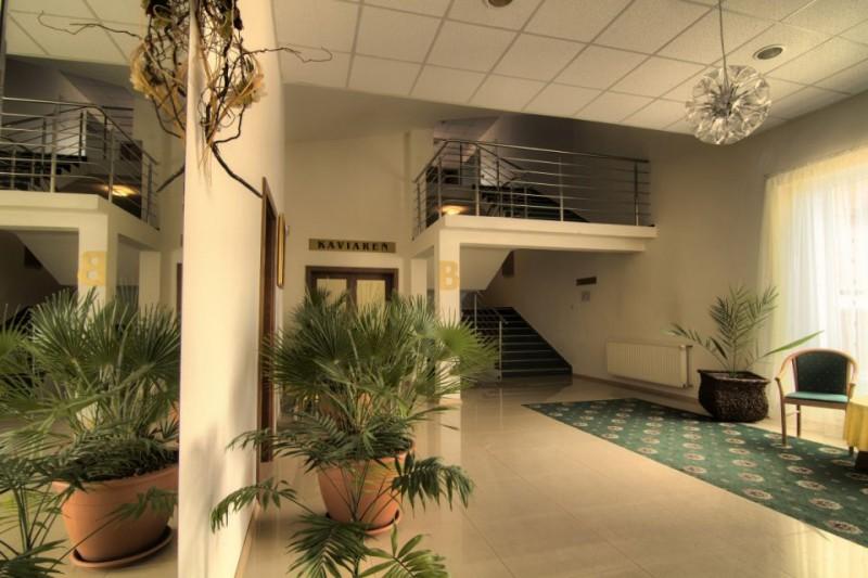 Termální koupaliště Podhájská - Hotel BORINKA  #4