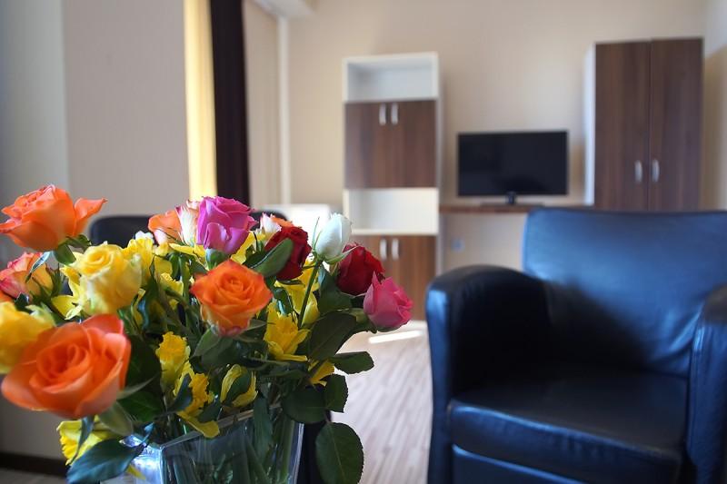 Hotel CHEMES #20