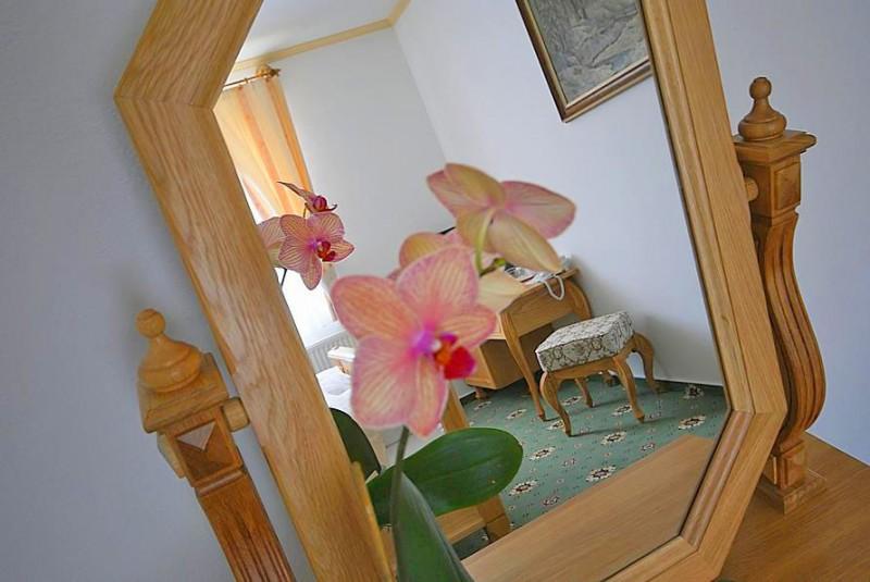 Hotel DIANA #31