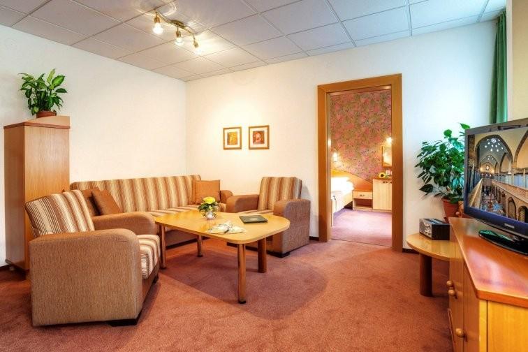 Hotel FLÓRA - Wellness hotel #41
