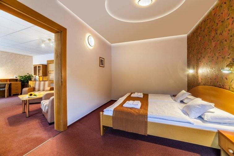 Hotel FLÓRA - Wellness hotel #42