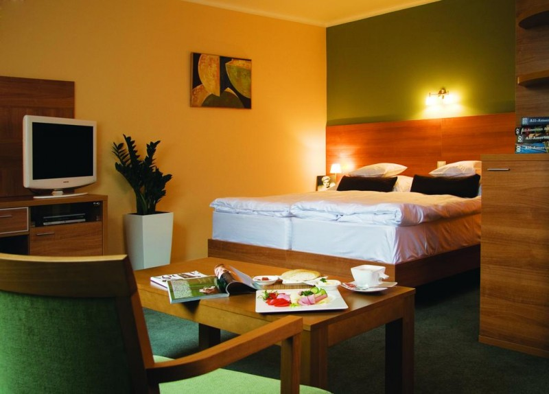 Hotel Karpaty #10