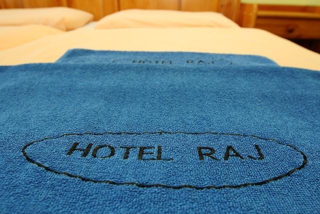 Hotel RAJ #19