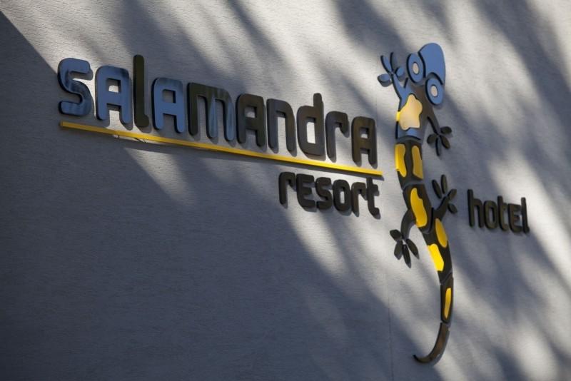 Hotel SALAMANDRA #10