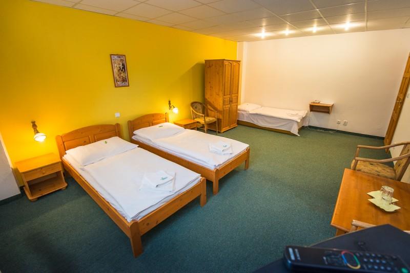 Hotel Thermalpark Nitrava #10