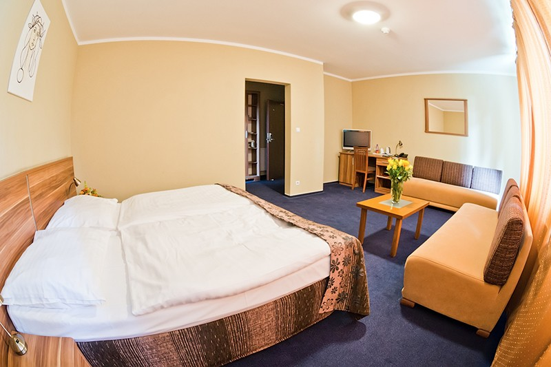 Hotel VICTORIA #16