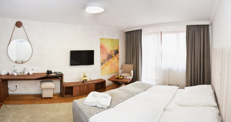 Hotel VICTORIA #9