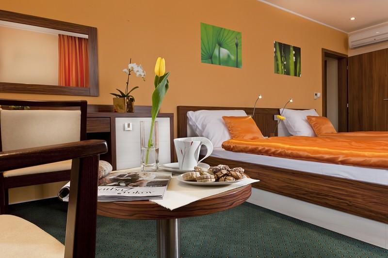 Hotel Viktor #24