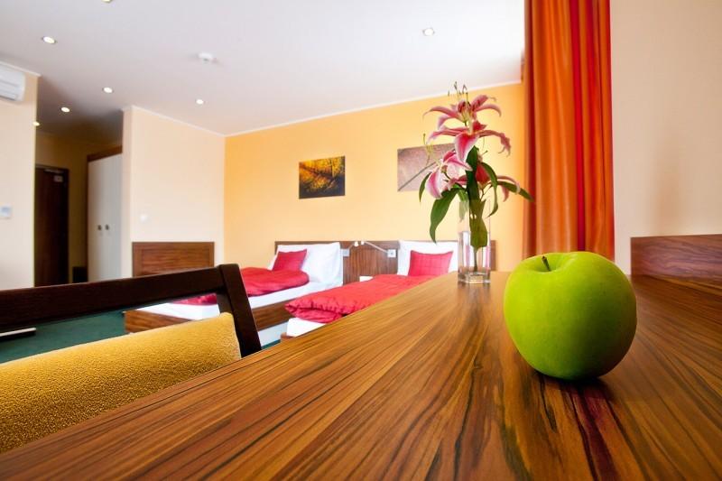 Hotel Viktor #39