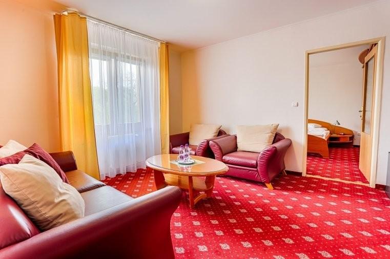 Morava Ensana Health Spa Hotel #11
