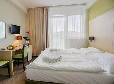 Vietoris Ensana Health Spa Hotel #8