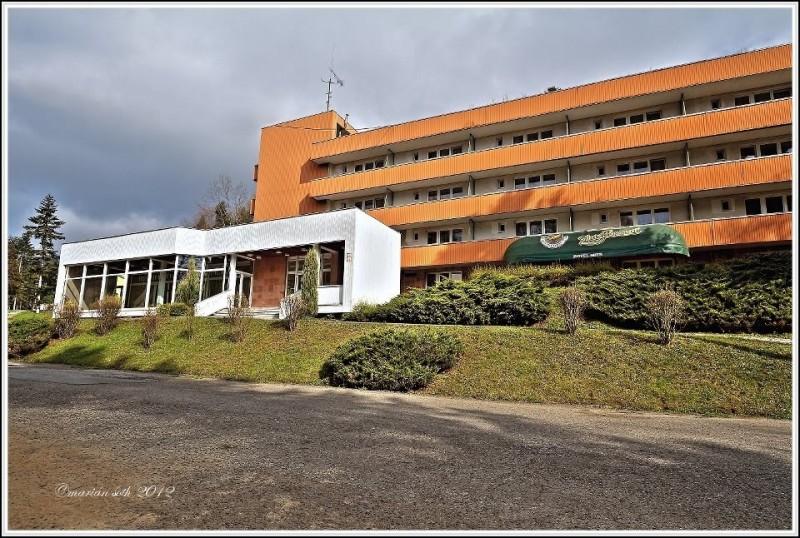 Hotel MIER #11