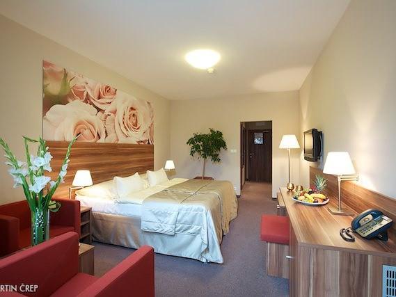 Liečebný hotel VEĽKÁ FATRA  #8