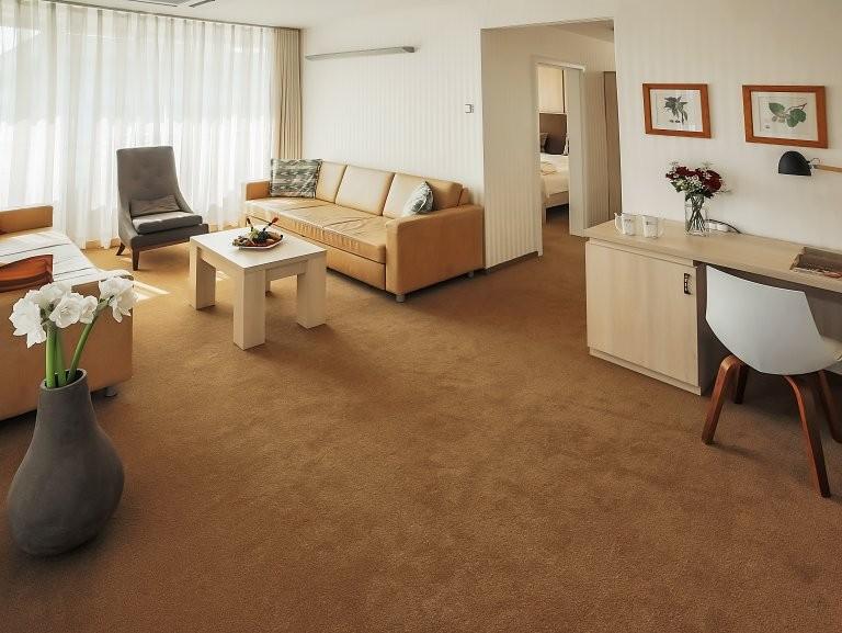 Liečebný hotel VEĽKÁ FATRA  #3