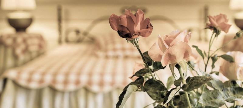 Penzión a reštaurácia VILLA ROSA #17