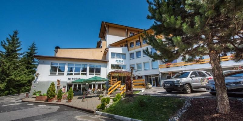 Letný rodinný pobyt v Nízkych Tatrách s bazénom a procedúrami #5