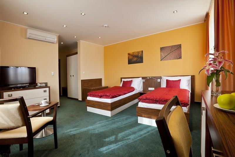 hotel viktor bratislava congresses and conferences. Black Bedroom Furniture Sets. Home Design Ideas