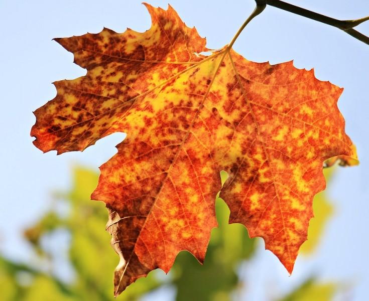 Jesenný pobyt v Tatrách #1