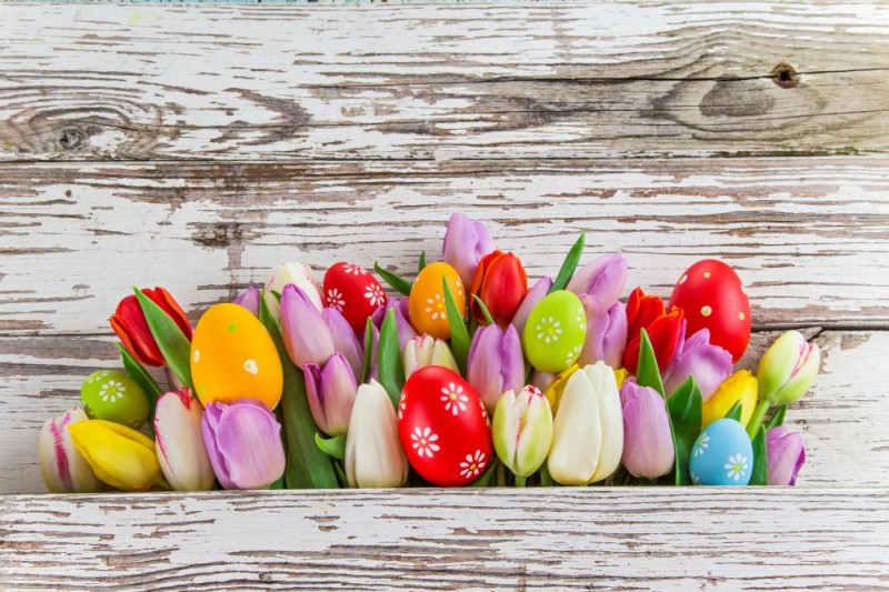 Húsvét Čertov térségében wellnessel #1