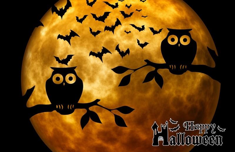Halloween pobyt cez Jesenné prázdniny v Nízkych Tatrách #1