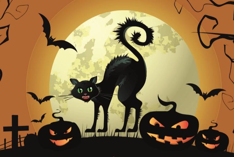 Jesenné prázdniny vo Vrátnej s Halloweenskym programom #1