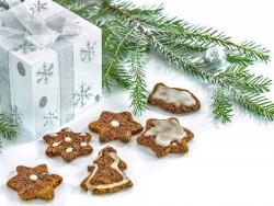 Vianočný pobyt vo Vysokých Tatrách so vstupom do Vitálneho sveta Štrbské Pleso