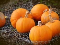 Halloween a Jesenné prázdniny v Jasnej (Dieťa do 15 rokov ZDARMA) Demänovská Dolina