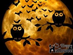 Halloween pobyt přes Podzimní prázdniny v Nízkých Tatrách Liptovský Ján