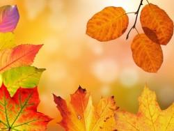 Podzimní pobyt ve Valčianské dolině s neomezeným wellness Valča