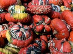 Jesenné prázdniny 2020 na Štrbskom Plese Štrbské Pleso