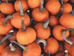 Halloween relaxation in Vyhne with unlimited wellness Vyhne