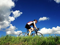 Cycling stay in Bratislava with swimming pool and sauna Bratislava