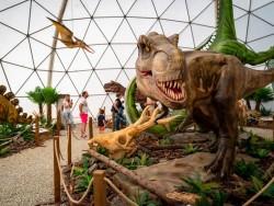 Dinopark Tatry Dolný Smokovec