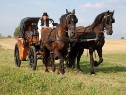 Farma PRÍSTAVKY Rajecké Teplice