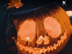 Halloween stay 2019 with scary animations Košická Belá