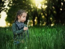 Pieris Léto 2019 s neomezeným wellness Podbanské