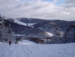 Ski Medvedie