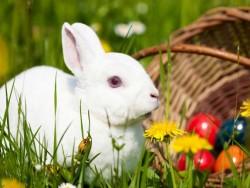 Velikonoční pobyt Dudince