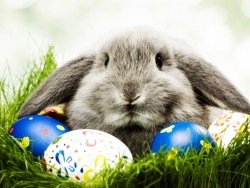 Húsvéti csomagajánlat bőséges programokkal, medence használattal, újévi fürdőzéssel  Piešťany (Pöstyén)